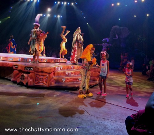 THE CHATTY MOMMA DISNEY VACATIONS Animal Kingdom Festival of the Lion King Show