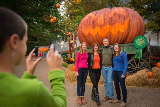 Trick or treat yourself with a theme park halloween - Busch gardens williamsburg halloween ...